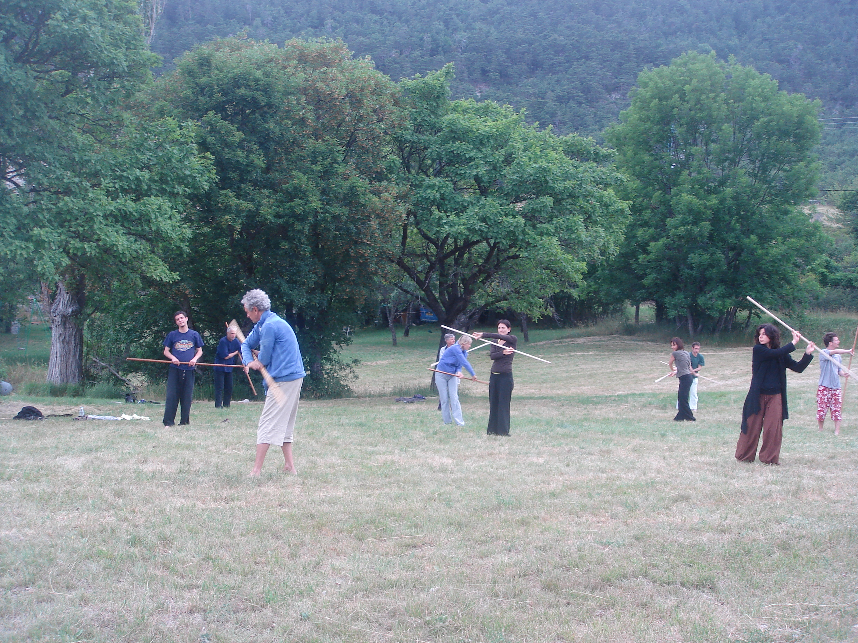 Stage Tai-Chi-Chuan et Qi-Gong France, Zanni Antonio